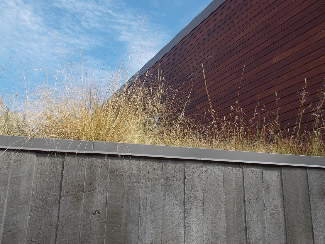 INTEGRATION GREEN ROOF 1